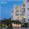 Luxury Apartments Gurgaon | DLF King's Court